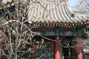 img_0113_china