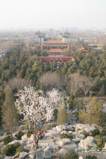 img_0473_china