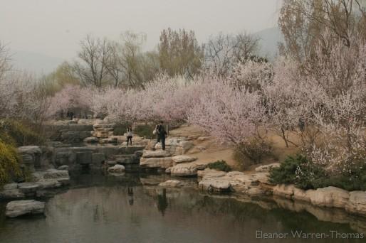 img_0792_china