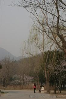 img_0794_china