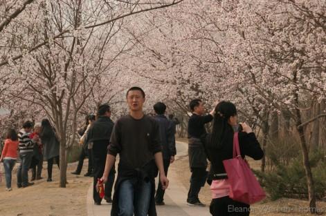 img_0797_china